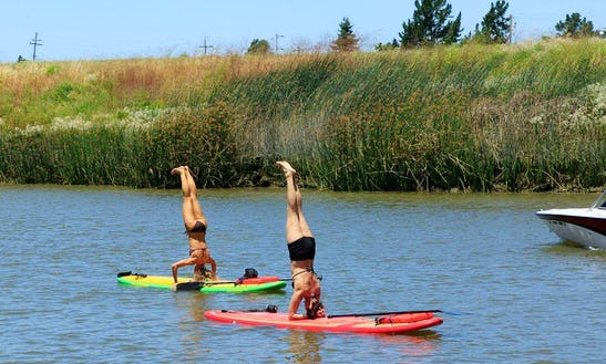 Paddleboard Rental In Petaluma, California