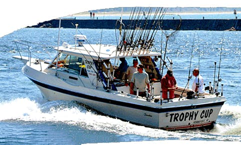30' Sport Fishing Yacht In Elberta