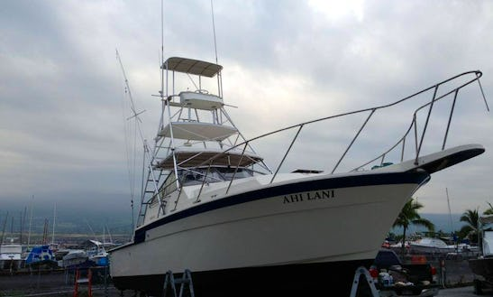 Rent 34ft Hatteras Snorkeling Trip Boat In North Kona, Hawaii