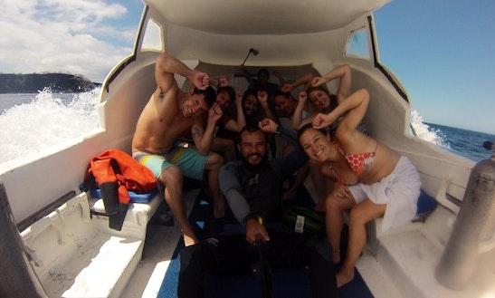 30' Passenger Boat