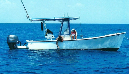 Fishing Charter On 24ft