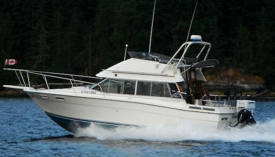 28' Motor Yacht Fishing Charter In Port Alberni, Canada