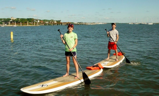 Relaxing Stand Up Paddle Tour In Maroochydore, Australia