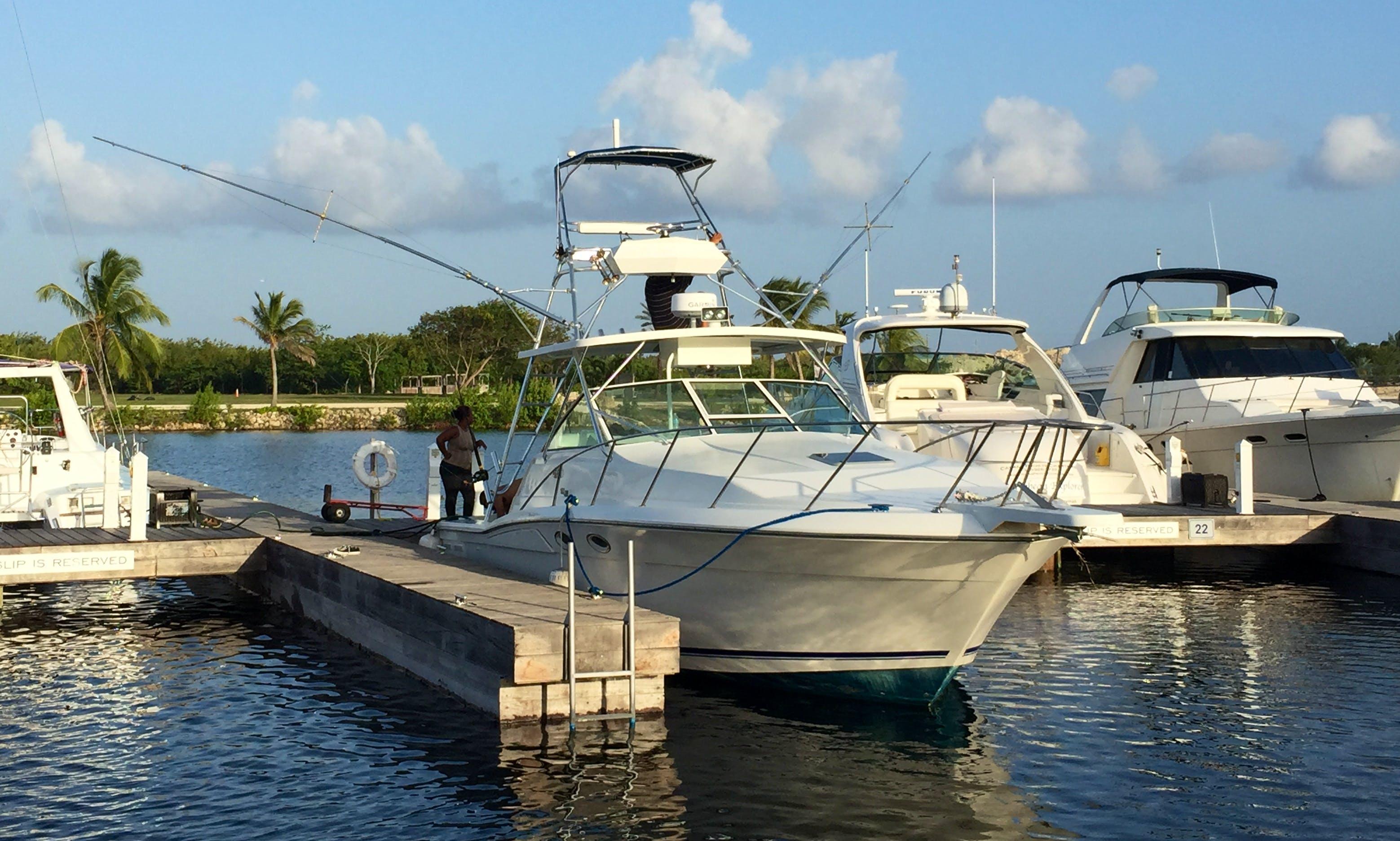 38' Wellcraft Boat Charter in Cayman Islands