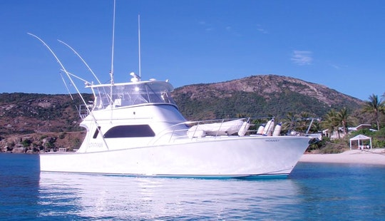47' Luxury Private Fishing Charter Boat In Cairns City