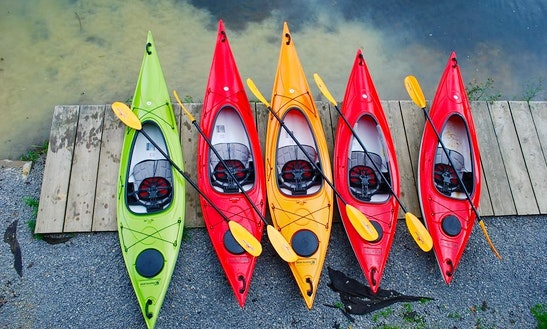 Guided Kayak Tours In Cocoa