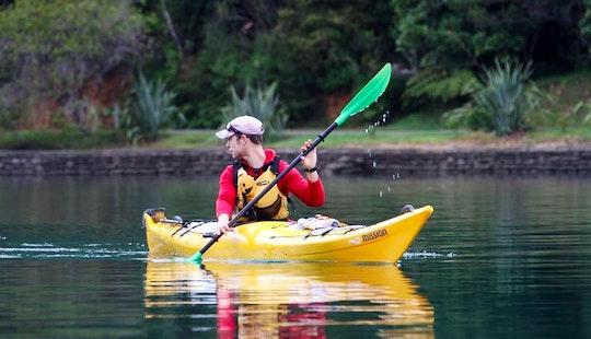 Single Kayak Rental In Picton, New Zealand