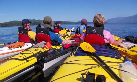 Sea Kayak Tours In Canada