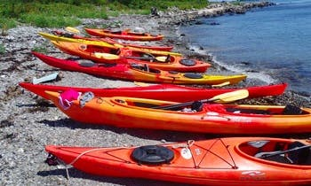 Kayak Rental In Cartersville