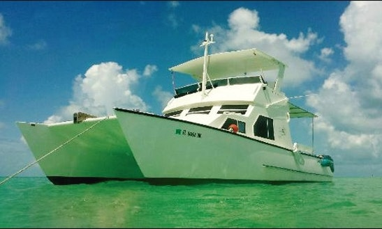 Cat S Paw Boat Rentals