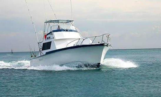 Aruba Fishing Charter On 42ft