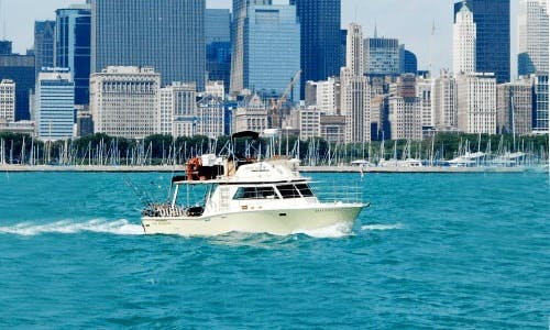 "36 ft ""Many Times II"" Motor Yacht Fishing Charter or Party Cruising in Chicago, Illinois"
