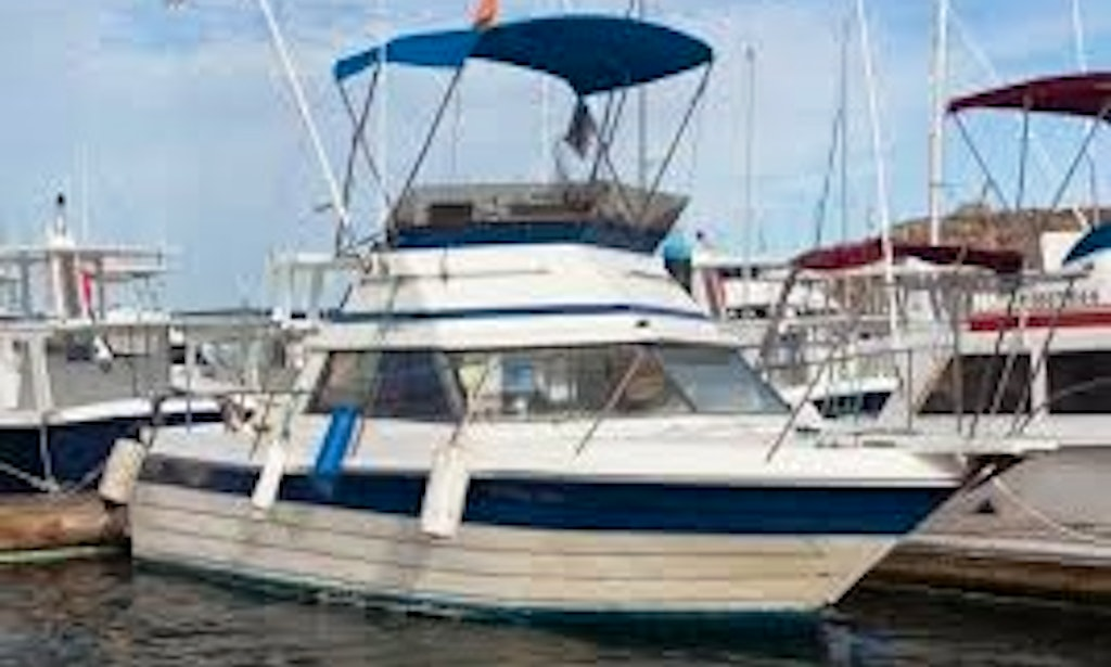 28 39 head boat gricelda fishing charter in cabo san lucas for San jose del cabo fishing charters