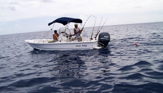 Don't Miss Out On A Guided Fishing Trip In Honduras