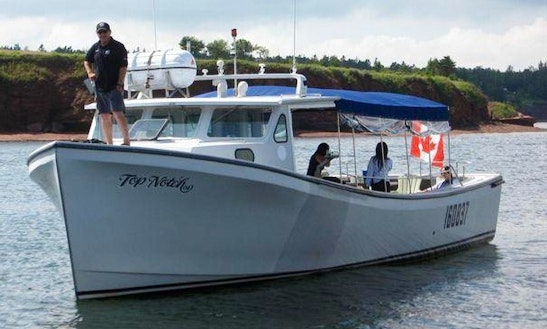 Lobster Fishing Tours In Charlottetown, Canada