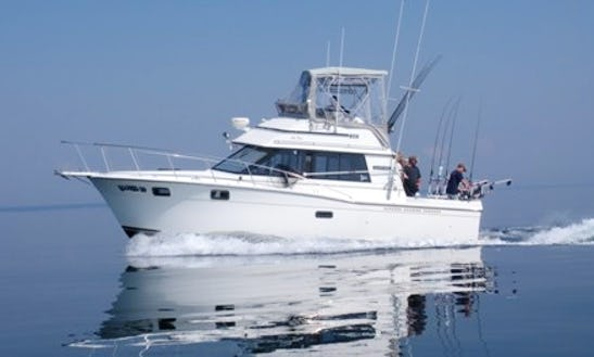 Fishing Charter On 35ft