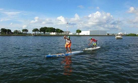 Stand  Up Paddleboard Rental In Saint Petersburg