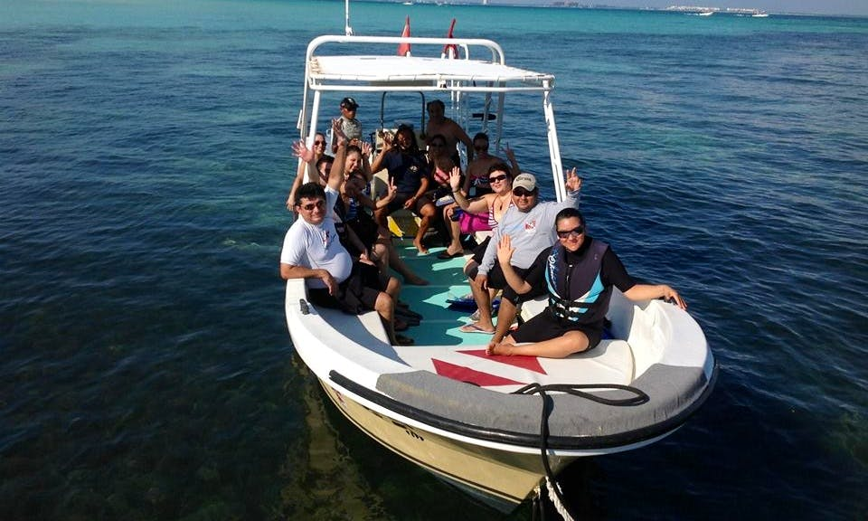 Whale Shark Tour In Isla Mujeres