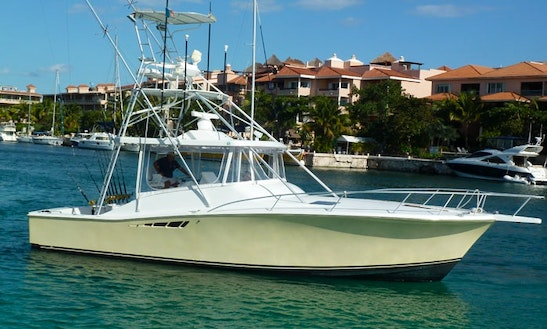 Maya Riviera Fishing Trips For 14 Person In Puerto Aventura, Mexico