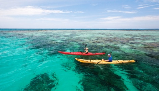 Kayak Mainland Tours In San Pedro, Belize