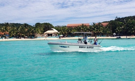 23' Center Console Fishing Charter In Islas De La Bahia, Honduras