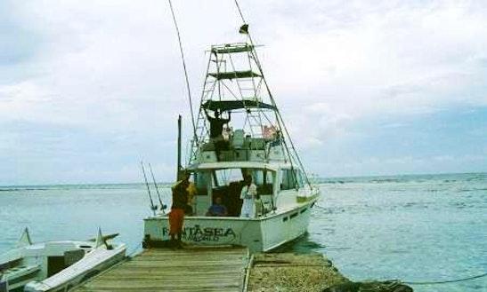 Deep drop fishing in montego bay jamaica getmyboat for Jamaica fishing charters