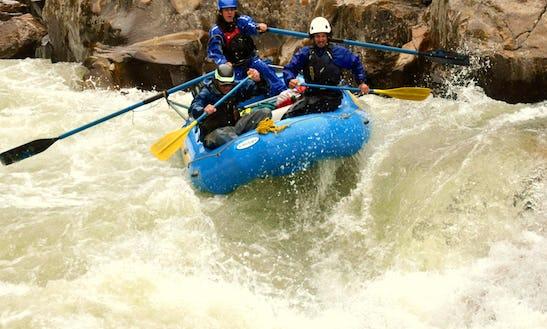 Kayak And Day Tours Operator