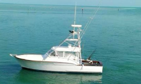 Fishing Charter On 38ft