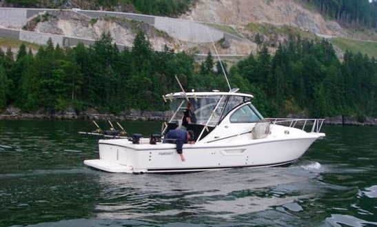 34ft Pursuit Cuddy Cabin Boat Charter In West Vancouver, Canada