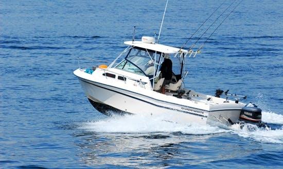 24ft Grady White Cuddy Cabin Boat Fishing Charter in Victoria, Canada