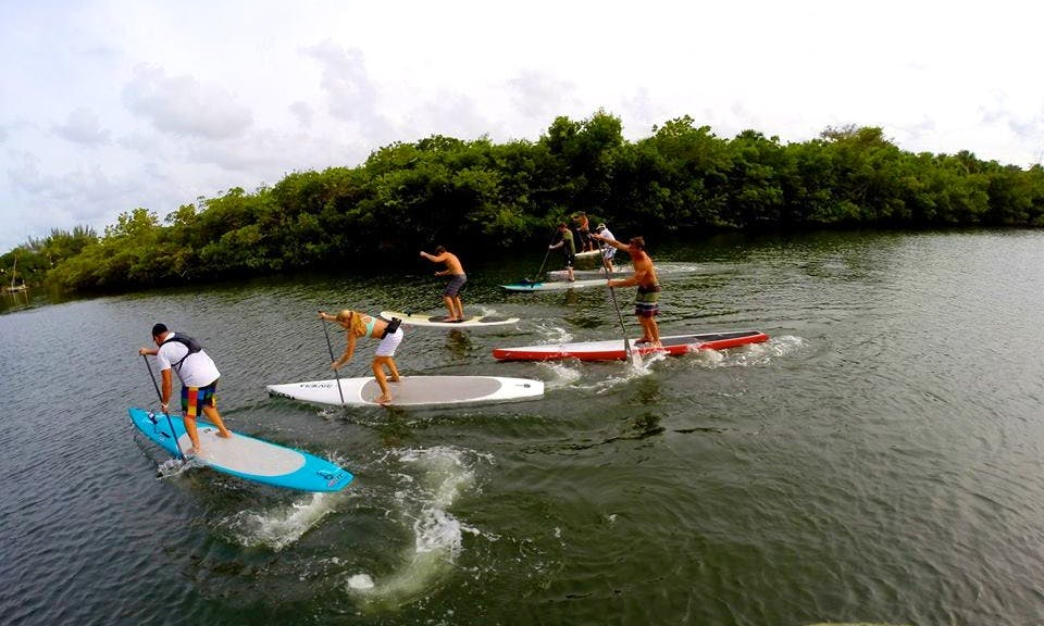 Best Stand Up Paddleboard Expereince In Tequesta, Florida