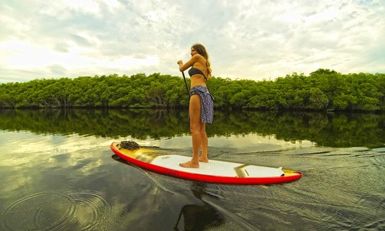 Stand Up Paddleboarding Lesson In Jupiter