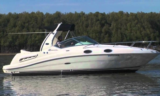 Searay 260 Rental In Panjim