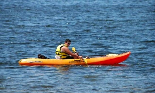 Discover Crystal Waters Of Florida On A Kayak!
