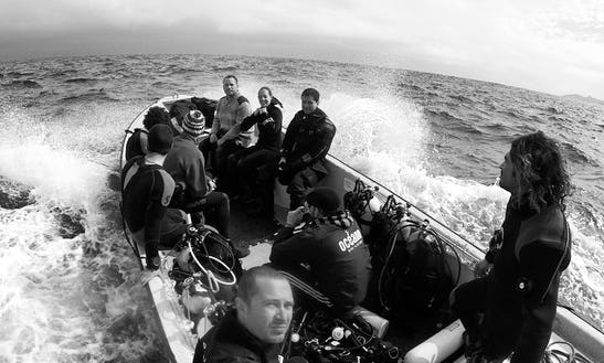 Dive Charter In Vitacura, Chile