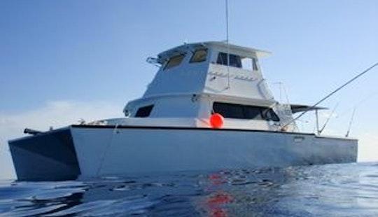 Enjoy 42ft  Sportfish Catamaran Captained Charter In Key West, Florida