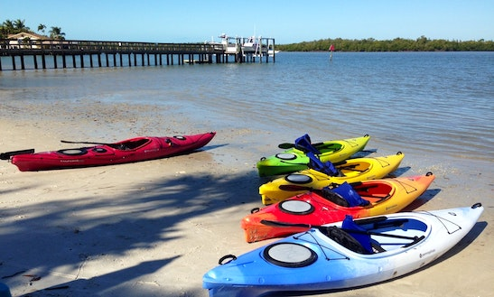 Kayak Rentals Available In Naples, Florida