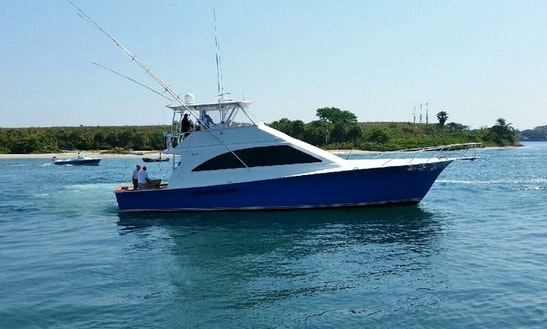 Fishing Charter On 56' Ocean Sportfisher In Virginia Beach, Virginia