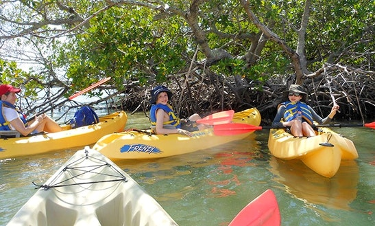 Kayak Rental In Naples