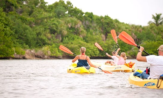 Kayak Tours And Rentals In Naples