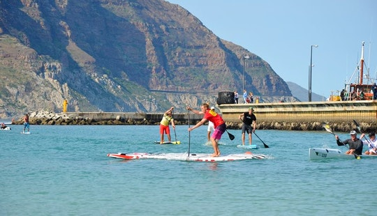 2-day To 7-day Paddleboard Lesson In Cape Town Cbd, South Africa