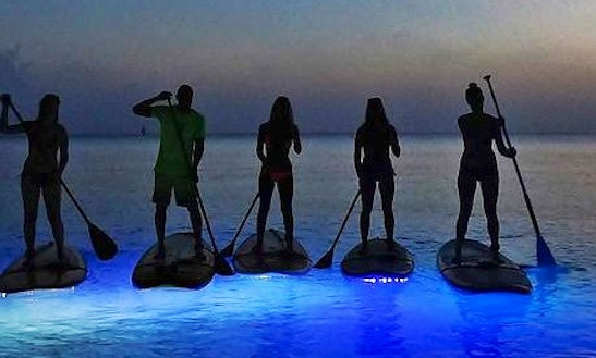Paddleboard Rental In Bodden Town, Cayman Islands