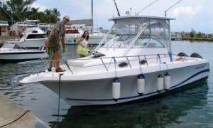 "32' Sport Fisherman ""Dancing Reels"" Fishing Charter in Ocho Rios, Jamaica"