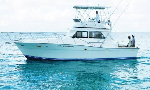 "35' Sport Fisherman ""Delmy"" Fishing Charter in Isla Mujeres, Mexico"