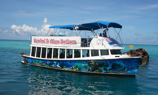 Glass Bottom & Sightseeing Cruise In Sandys