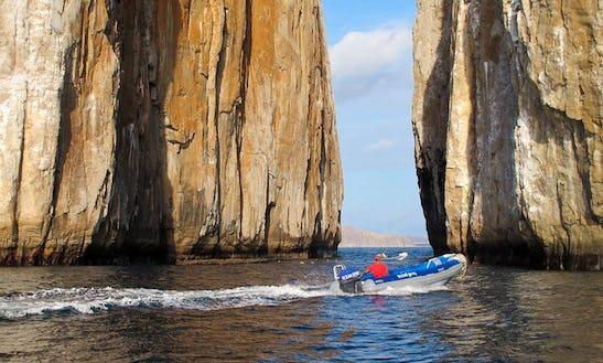 Boat Diving In Islas Galápagos