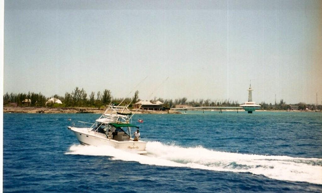 Sport fisherman fishing charter in philipsburg sint for St maarten fishing