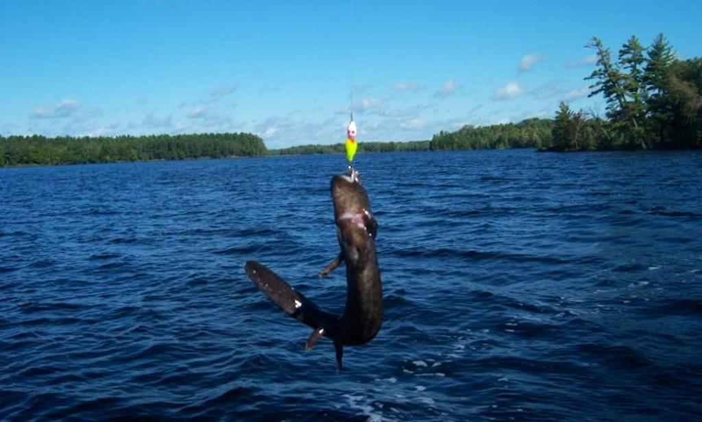 Jon boat fishing charter in eagle river wisconsin getmyboat for Fishing in wisconsin