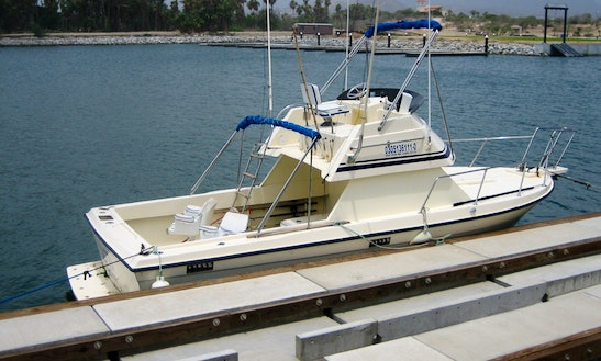 28' Fishing Charter In San José Del Cabo, Mexico For Up To 5 Persons