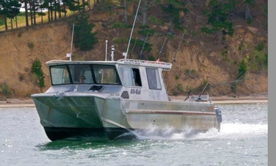 Hire 33' Power Catamaran Bladerunner In Helensville